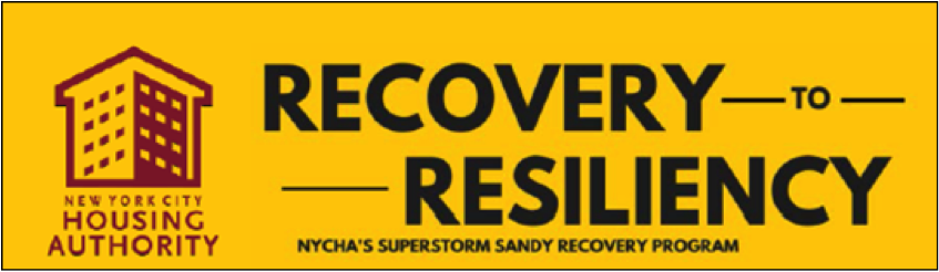 Recovery to Resiliency